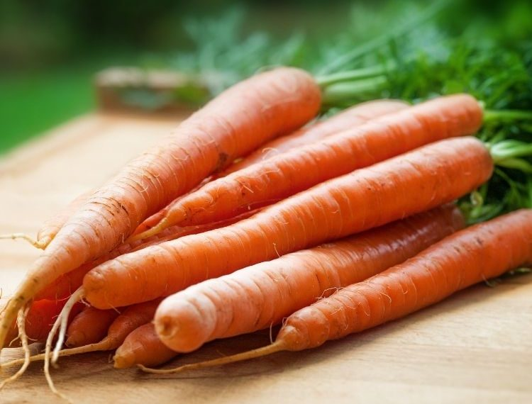 nutrisi vitamin A