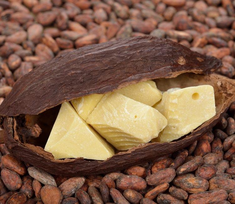 5 Kandungan Skincare yang Wajib Dihindari Kulit Berjerawat - Cocoa Butter